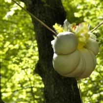 Nature Art EN 2007
